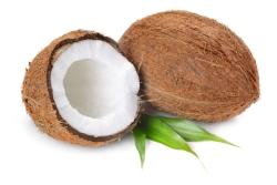 Coconuts i